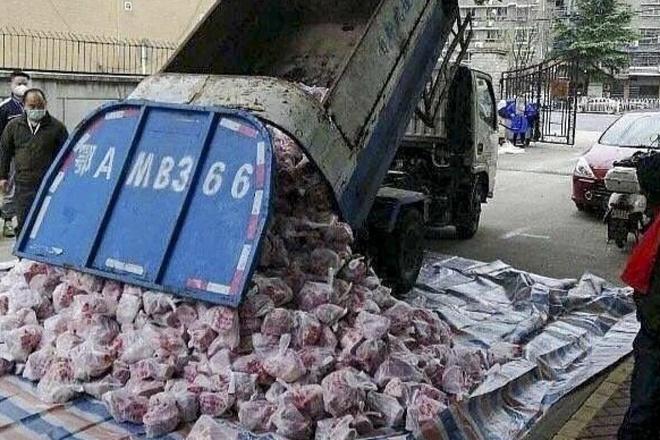 Chiếc xe tải chở rác nhưng được sử dụng để chuyển thịt lợn cho người dân bị phong tỏa